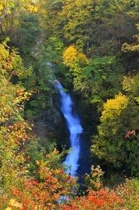 秋山郷 紅葉の蛇淵の滝の写真素材 [FYI04829313]