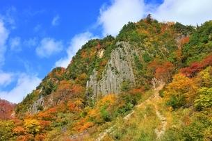 秋山郷 布岩の紅葉の写真素材 [FYI04829337]