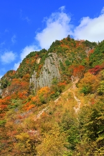秋山郷 布岩の紅葉の写真素材 [FYI04829339]