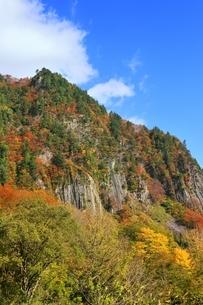 秋山郷 布岩の紅葉の写真素材 [FYI04829343]