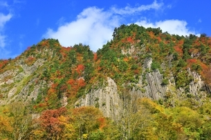 秋山郷 布岩の紅葉の写真素材 [FYI04829346]
