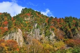 秋山郷 布岩の紅葉の写真素材 [FYI04829348]