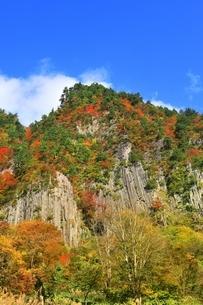 秋山郷 布岩の紅葉の写真素材 [FYI04829349]