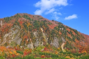 秋山郷 布岩山の紅葉の写真素材 [FYI04829356]