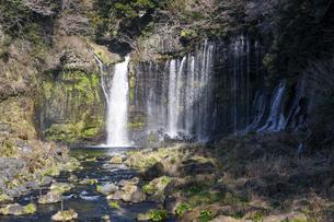 白糸の滝(静岡県)の写真素材 [FYI04830004]