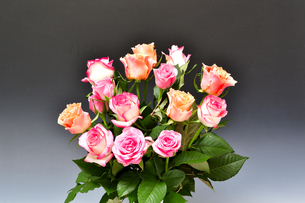 花瓶にいけたバラの花の写真素材 [FYI04830671]