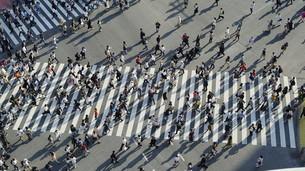 東京・渋谷・スクランブル交差点の写真素材 [FYI04831034]
