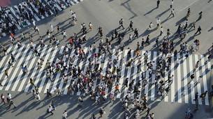 東京・渋谷・スクランブル交差点の写真素材 [FYI04831036]