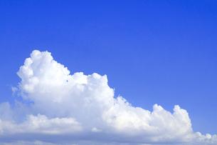 夏雲の写真素材 [FYI04831167]