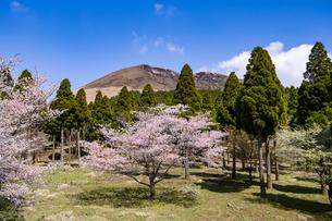 熊本県 阿蘇パノラマラインからの眺望の写真素材 [FYI04831205]