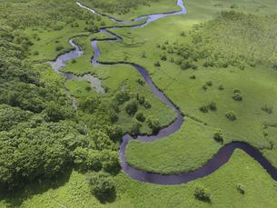 空撮・夏の釧路湿原(北海道・鶴居村)の写真素材 [FYI04831413]
