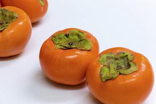 オレンジ色の柿の写真素材 [FYI04831719]