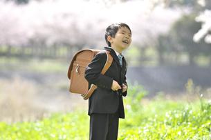小学一年生の男の子の写真素材 [FYI04831889]