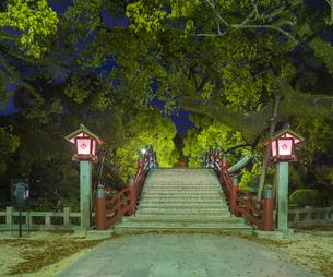 福岡県 風景 太宰府天満宮 夕景の写真素材 [FYI04832156]