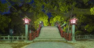 福岡県 風景 太宰府天満宮 夕景の写真素材 [FYI04832158]