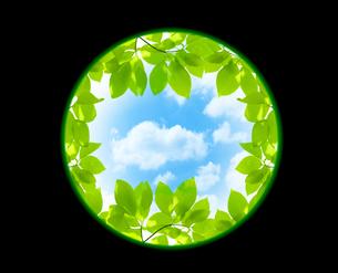 新緑と空の写真素材 [FYI04832221]