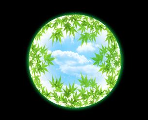 新緑と空の写真素材 [FYI04832224]