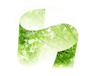 新緑の写真素材 [FYI04832225]