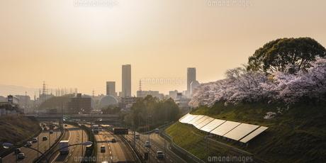 万博記念公園の夕焼け。の写真素材 [FYI04832653]