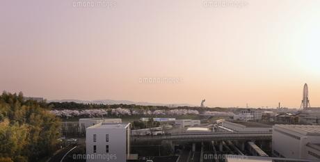 万博記念公園の朝焼け。の写真素材 [FYI04832655]