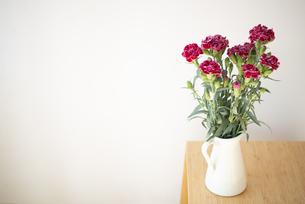 花瓶に生けてあるカーネーションの写真素材 [FYI04832849]