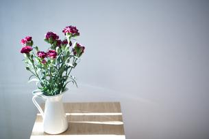 花瓶に生けてあるカーネーションの写真素材 [FYI04832853]