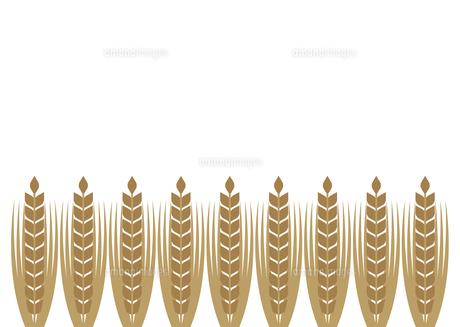 麦のフレームのイラスト素材 [FYI04832870]