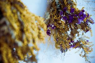 ミモザとスターチスのドライフラワーのスワッグの写真素材 [FYI04832945]