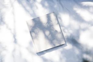 自然光と植物の影が差し込む、白のファブリックに置かれた本の写真素材 [FYI04832957]