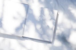 自然光と植物の影が差し込む、白のファブリックに置かれた本の写真素材 [FYI04832958]