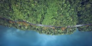 ドローンで撮影した俯瞰で見た森と道路と海の写真素材 [FYI04833256]