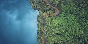 ドローンで撮影した俯瞰で見た森と道路と海の写真素材 [FYI04833257]
