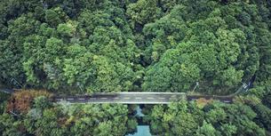 ドローンで撮影した俯瞰で見た森と道路と海の写真素材 [FYI04833258]
