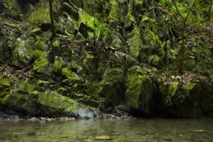 苔が生い茂った岩場と静かに流れる川の写真素材 [FYI04833264]