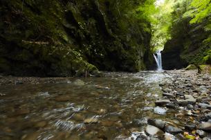 森の中に流れる滝と川の写真素材 [FYI04833269]