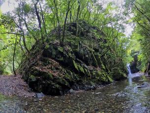 苔が生い茂った岩場と静かに流れる川の写真素材 [FYI04833271]