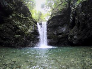 森の真ん中から流れる滝の写真素材 [FYI04833273]