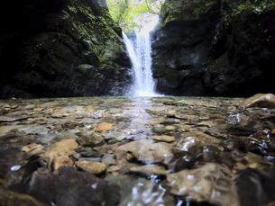 森の真ん中から流れる滝の写真素材 [FYI04833275]