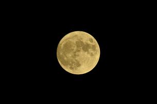 中秋の満月の写真素材 [FYI04833322]