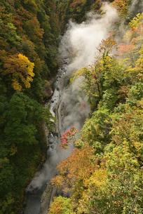 初秋の小安峡の写真素材 [FYI04833421]
