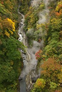 初秋の小安峡の写真素材 [FYI04833425]