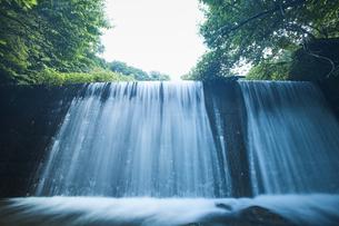 勢いよく流れる堰堤の写真素材 [FYI04833519]