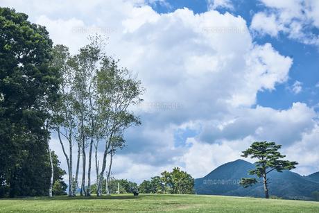 草原と木と山の写真素材 [FYI04833527]