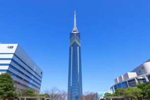 福岡タワーの写真素材 [FYI04833534]