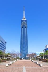 福岡タワーの写真素材 [FYI04833535]