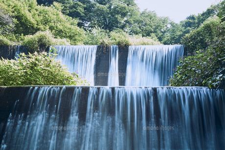 森林の中の堰堤の写真素材 [FYI04833545]