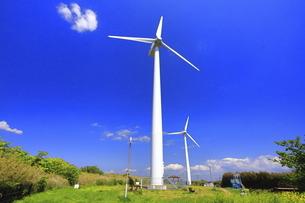 神奈川県 宮川公園の風力発電の写真素材 [FYI04833817]