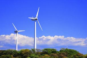 神奈川県 宮川公園の風力発電の写真素材 [FYI04833823]