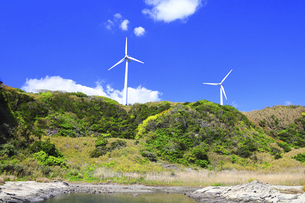 神奈川県 宮川公園の風力発電の写真素材 [FYI04833837]