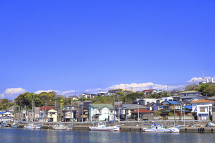 神奈川県 三崎漁港の写真素材 [FYI04833862]